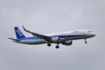 TAKAHIDEさんが、小松空港で撮影した全日空 A321-211の航空フォト(写真)