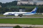 resocha747さんが、福岡空港で撮影した全日空 787-8 Dreamlinerの航空フォト(写真)