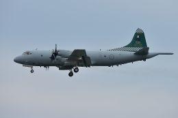うめやしきさんが、厚木飛行場で撮影したオーストラリア空軍 AP-3C Orionの航空フォト(写真)