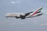 resocha747さんが、成田国際空港で撮影したエミレーツ航空 A380-861の航空フォト(写真)