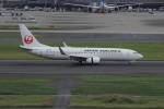 resocha747さんが、羽田空港で撮影した日本航空 737-846の航空フォト(写真)