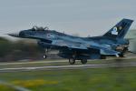 らひろたんさんが、茨城空港で撮影した航空自衛隊 F-2Aの航空フォト(写真)