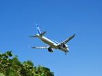 おっつんさんが、小松空港で撮影した全日空 A321-272Nの航空フォト(写真)