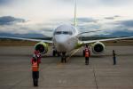 Cygnus00さんが、新千歳空港で撮影したジンエアー 737-8SHの航空フォト(写真)