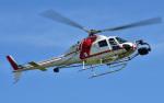 Soraya_Projectさんが、栃木ヘリポートで撮影した朝日航洋 AS355F2 Ecureuil 2の航空フォト(写真)