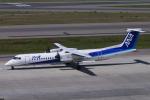 yabyanさんが、中部国際空港で撮影したエアーニッポンネットワーク DHC-8-402Q Dash 8の航空フォト(飛行機 写真・画像)