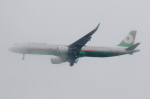 ぎんじろーさんが、羽田空港で撮影したエバー航空 A321-211の航空フォト(写真)