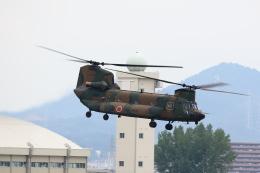 T.Sazenさんが、名古屋飛行場で撮影した陸上自衛隊 CH-47JAの航空フォト(飛行機 写真・画像)