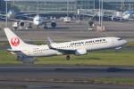 JA882Aさんが、羽田空港で撮影した日本航空 737-846の航空フォト(写真)