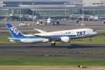 JA882Aさんが、羽田空港で撮影した全日空 787-8 Dreamlinerの航空フォト(写真)