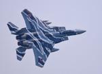 がいなやつさんが、築城基地で撮影した航空自衛隊 F-15DJ Eagleの航空フォト(写真)
