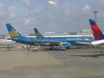 ケーキさんが、成田国際空港で撮影したベトナム航空 A330-223の航空フォト(写真)