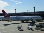 ケーキさんが、成田国際空港で撮影したターキッシュ・エアラインズ 777-3F2/ERの航空フォト(写真)