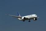 ja007gさんが、成田国際空港で撮影したユナイテッド航空 787-8 Dreamlinerの航空フォト(写真)