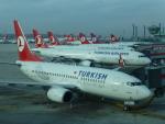 ケーキさんが、アタテュルク国際空港で撮影したターキッシュ・エアラインズ 737-752の航空フォト(写真)