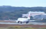 ぷぅちゃんさんが、岡山空港で撮影した日本航空 737-846の航空フォト(写真)