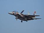 がいなやつさんが、新田原基地で撮影した航空自衛隊 F-15DJ Eagleの航空フォト(写真)