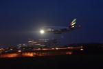 NIKKOREX Fさんが、成田国際空港で撮影したエミレーツ航空 A380の航空フォト(写真)