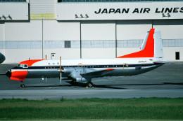トロピカルさんが、羽田空港で撮影した国土交通省 航空局 YS-11-104の航空フォト(写真)