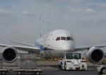 soucanflyさんが、羽田空港で撮影した全日空 787-8 Dreamlinerの航空フォト(写真)