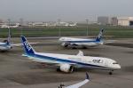 ハピネスさんが、羽田空港で撮影した全日空 787-9の航空フォト(写真)