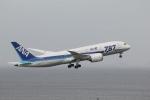 sus316さんが、羽田空港で撮影した全日空 787-8 Dreamlinerの航空フォト(写真)