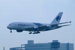ひろかずさんが、成田国際空港で撮影したマレーシア航空 A380-841の航空フォト(写真)