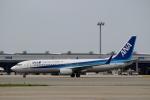 ハピネスさんが、関西国際空港で撮影した全日空 737-881の航空フォト(写真)