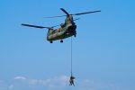 ひろかずさんが、木更津飛行場で撮影した陸上自衛隊 CH-47JAの航空フォト(写真)