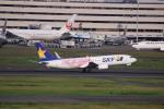 けいとパパさんが、羽田空港で撮影したスカイマーク 737-86Nの航空フォト(写真)