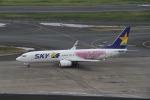 はるさんが、羽田空港で撮影したスカイマーク 737-86Nの航空フォト(写真)