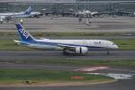 はるさんが、羽田空港で撮影した全日空 787-8 Dreamlinerの航空フォト(写真)