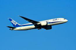 まいけるさんが、スワンナプーム国際空港で撮影した全日空 787-8 Dreamlinerの航空フォト(写真)