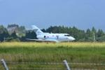 masatakaさんが、新田原基地で撮影した航空自衛隊 U-125A(Hawker 800)の航空フォト(写真)