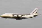 A.Yuzenさんが、成田国際空港で撮影したアントノフ・エアラインズ An-124-100 Ruslanの航空フォト(写真)
