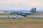 とろーるさんが、新千歳空港で撮影した航空自衛隊 F-15DJ Eagleの航空フォト(写真)