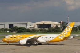 安芸あすかさんが、ドンムアン空港で撮影したスクート 787-8 Dreamlinerの航空フォト(飛行機 写真・画像)