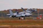 ペア ドゥさんが、千歳基地で撮影した航空自衛隊 F-15DJ Eagleの航空フォト(写真)