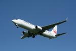 hachiさんが、新千歳空港で撮影した日本航空 737-846の航空フォト(写真)