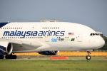 y-dynastyさんが、成田国際空港で撮影したマレーシア航空 A380-841の航空フォト(写真)