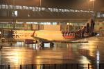 キイロイトリ1005fさんが、関西国際空港で撮影した香港エクスプレス A321-231の航空フォト(写真)