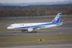 meijeanさんが、新千歳空港で撮影した全日空 A320-211の航空フォト(写真)