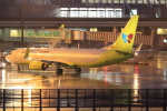 キイロイトリ1005fさんが、関西国際空港で撮影したジンエアー 737-8Q8の航空フォト(写真)