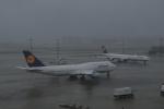 しかばねさんが、羽田空港で撮影したルフトハンザドイツ航空 747-830の航空フォト(写真)