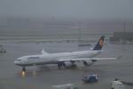 しかばねさんが、羽田空港で撮影したルフトハンザドイツ航空 A340-642の航空フォト(写真)