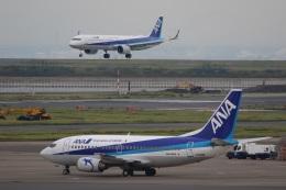 VIPERさんが、羽田空港で撮影したANAウイングス 737-54Kの航空フォト(写真)