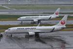 mojioさんが、羽田空港で撮影した日本航空 737-846の航空フォト(写真)
