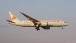 ぱん_くまさんが、成田国際空港で撮影したエア・カナダ 787-8 Dreamlinerの航空フォト(写真)