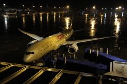 さんみさんが、中部国際空港で撮影したエティハド航空 787-9の航空フォト(写真)