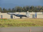 おっつんさんが、小松空港で撮影した航空自衛隊 F-15DJ Eagleの航空フォト(写真)